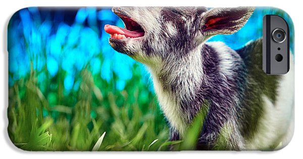Baby Goat Kid Singing IPhone 6s Case by TC Morgan