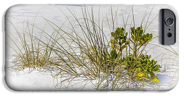 Marngrove And Sea Oats IPhone Case by Marvin Spates
