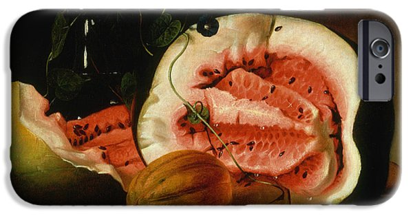 Melons And Morning Glories  IPhone 6s Case by Raphaelle Peale