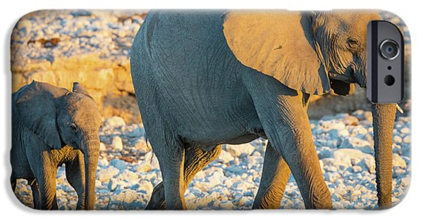 Mother And Baby Elephant IPhone Case by Inge Johnsson
