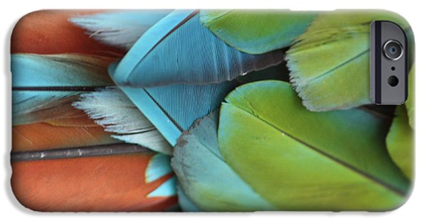 Natural Pallete IPhone Case by Brian Boyle