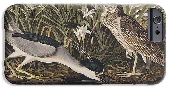 Night Heron Or Qua Bird IPhone 6s Case by John James Audubon