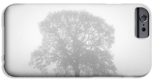 November Oak IPhone Case by Richard Thomas