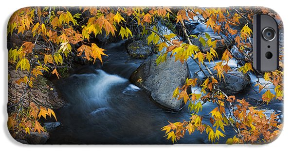 Oak Creek Canyon At Slide Rock In The Fall IPhone Case by Dave Dilli