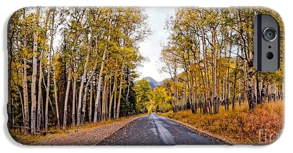 Old Fall River Road With Changing Aspens - Rocky Mountain National Park - Estes Park Colorado IPhone Case by Silvio Ligutti