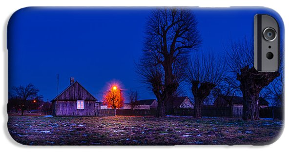 Orange Tree IPhone Case by Dmytro Korol
