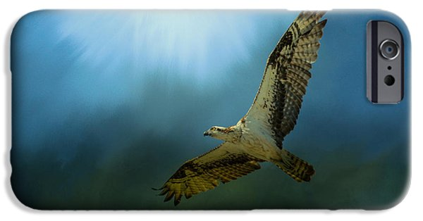 Osprey In The Evening Light IPhone 6s Case by Jai Johnson