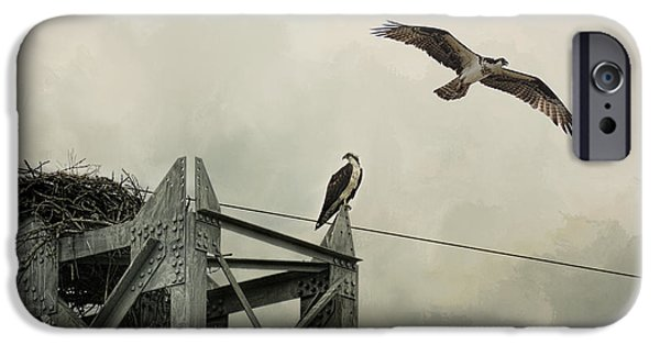 Ospreys At Pickwick IPhone 6s Case by Jai Johnson