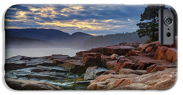 Otter Cove In The Mist IPhone Case by Rick Berk