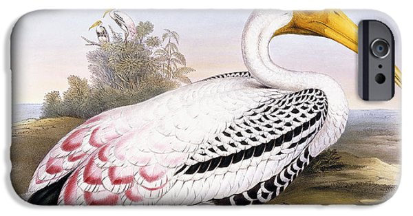 Painted Stork IPhone 6s Case by John Gould