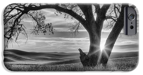 Palouse Sentinel - Black And White IPhone Case by Mark Kiver