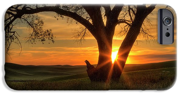 Palouse Sentinel IPhone Case by Mark Kiver