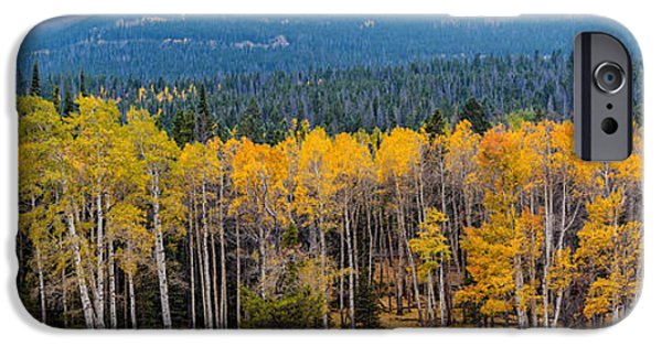 Panorama Of Changing Aspens At Rocky Mountain National Park - Estes Park Colorado IPhone Case by Silvio Ligutti