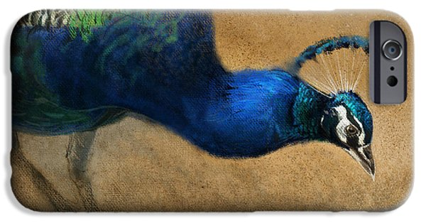 Peacock Light IPhone Case by Aaron Blaise