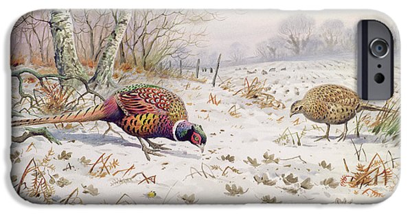 Pheasant And Partridge Eating  IPhone 6s Case by Carl Donner