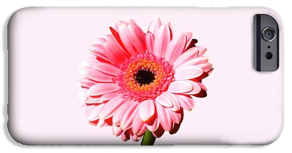 Pink Gerbera IPhone Case by Scott Carruthers
