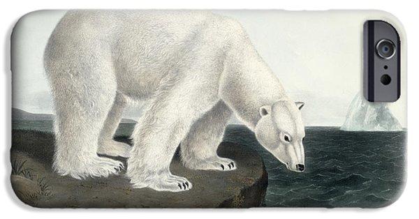 Polar Bear IPhone 6s Case by John James Audubon