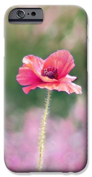 Poppy Love IPhone Case by Amy Tyler