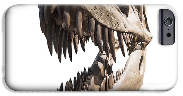 Portrait Of A Dinosaur Skeleton, Isolated On Pure White. IPhone 6s Case by Caio Caldas