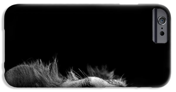 Portrait Of Lion In Black And White IIi IPhone Case by Lukas Holas