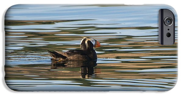 Puffin Reflected IPhone 6s Case by Mike Dawson