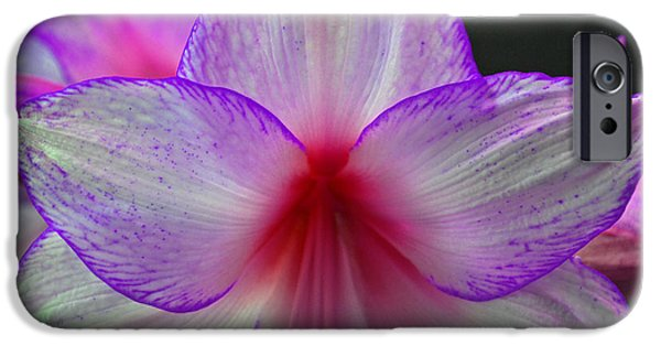 Purple Haze IPhone Case by Donna Shahan