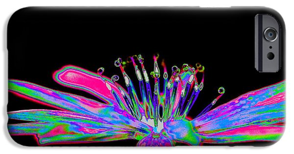 Rainbow Chicory IPhone Case by Richard Patmore