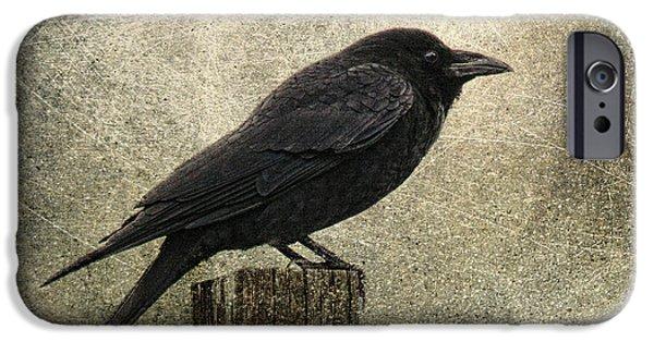 Raven IPhone 6s Case by Elena Nosyreva