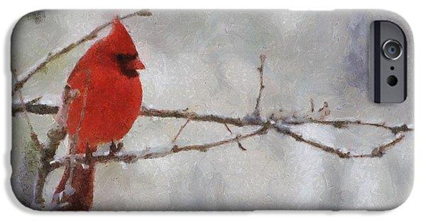 Red Bird Of Winter IPhone 6s Case by Jeff Kolker