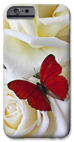Red Butterfly On White Roses IPhone Case by Garry Gay