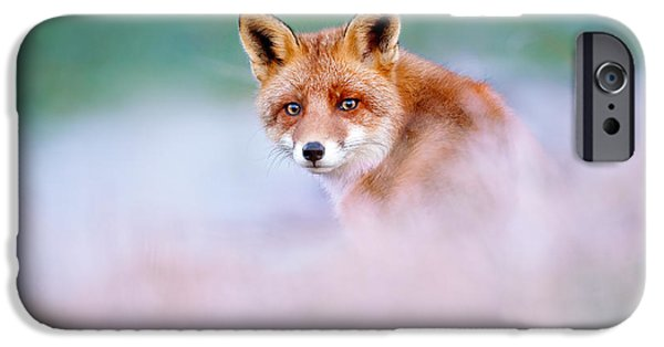 Red Fox In A Mysterious World IPhone Case by Roeselien Raimond