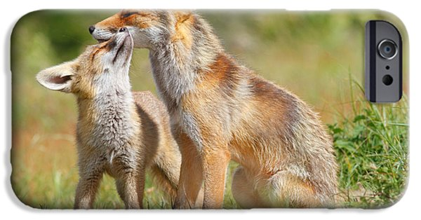 Red Fox Love IPhone Case by Roeselien Raimond