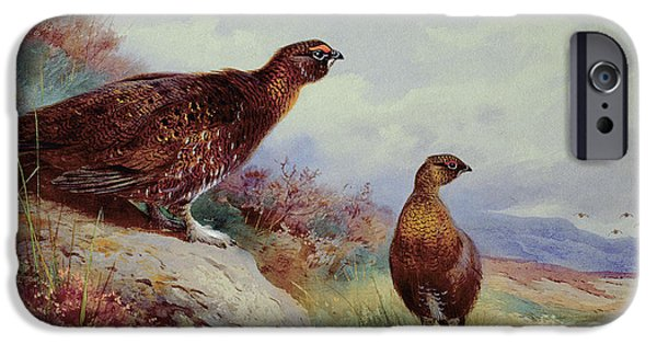 Red Grouse On The Moor, 1917 IPhone 6s Case by Archibald Thorburn