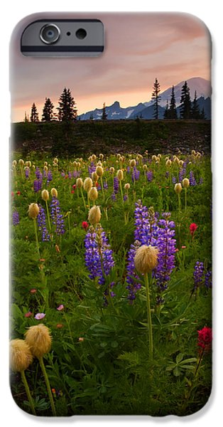 Red Sky Meadow IPhone Case by Mike  Dawson