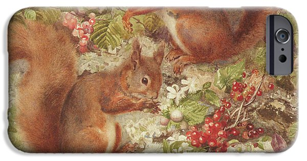 Red Squirrels Gathering Fruits And Nuts IPhone 6s Case by Rosa Jameson
