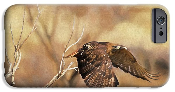 Redtail On The Move IPhone 6s Case by Donna Kennedy