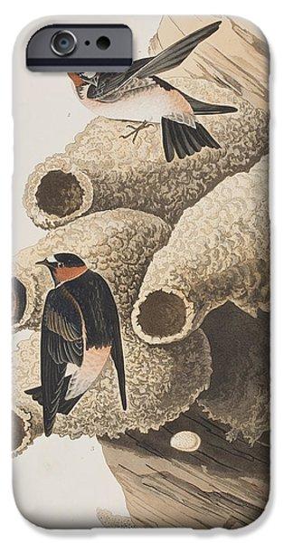 Republican Or Cliff Swallow IPhone Case by John James Audubon