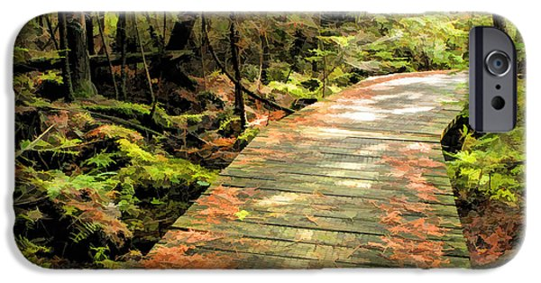 Ridges Sanctuary Boardwalk IPhone Case by Christopher Arndt