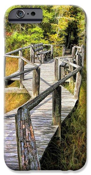 Ridges Sanctuary Crossing IPhone Case by Christopher Arndt