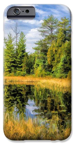 Ridges Sanctuary Reflections IPhone Case by Christopher Arndt