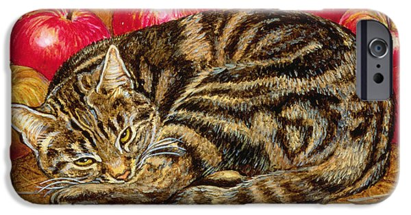 Right Hand Apple Cat IPhone Case by Ditz