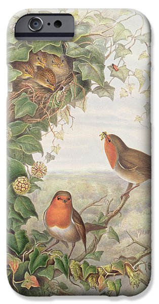 Robin IPhone 6s Case by John Gould