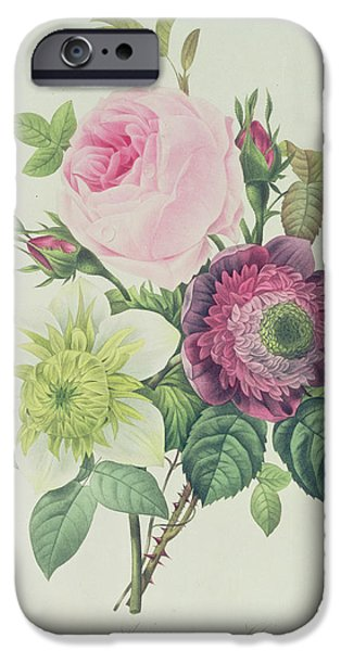 Rose IPhone Case by Pierre Joseph Redoute