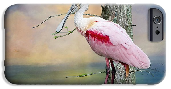 Roseate Spoonbill In Treetop IPhone 6s Case by Bonnie Barry