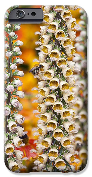 Rusty Foxgloves IPhone Case by Tim Gainey