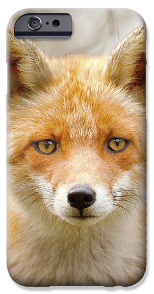 Sad Eyed Fox Of The Lowlands - Red Fox Portrait IPhone Case by Roeselien Raimond