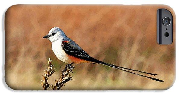 Scissor-tailed Flycatcher IPhone 6s Case by Betty LaRue