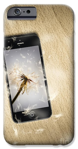 Seeding Connectivity IPhone Case by Jorgo Photography - Wall Art Gallery