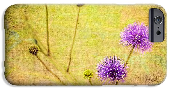 Sensitive Briar Flowers IPhone Case by Bellesouth Studio