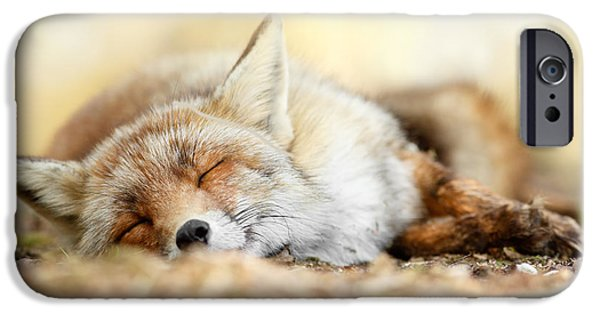 Fox IPhone Case featuring the photograph Sleeping Beauty -red Fox In Rest by Roeselien Raimond